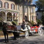 Horse and Carriage Ride at McMillan Inn