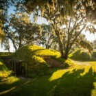 Fort McAllister Historic State Park