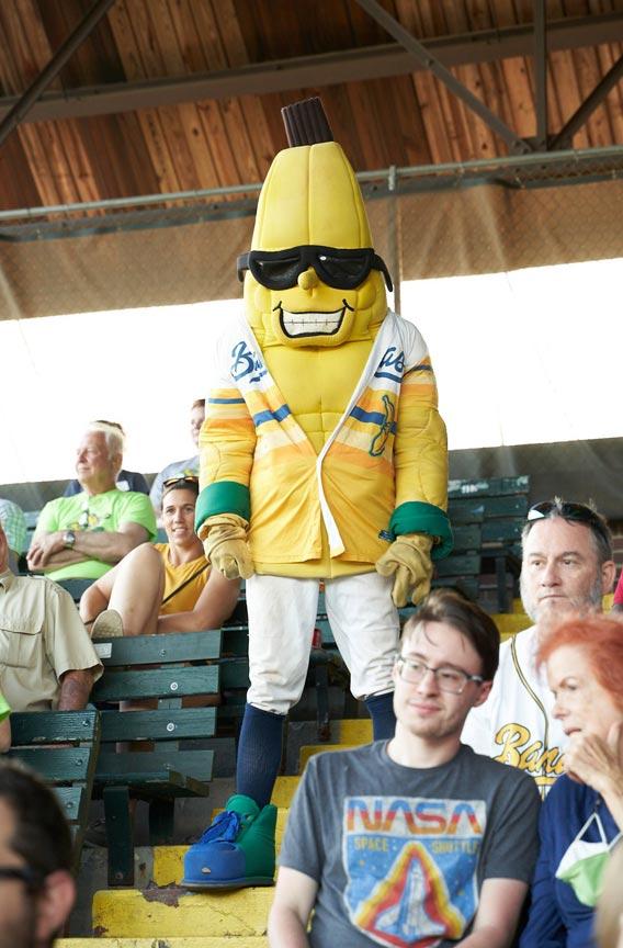 Savannah Bananas Split